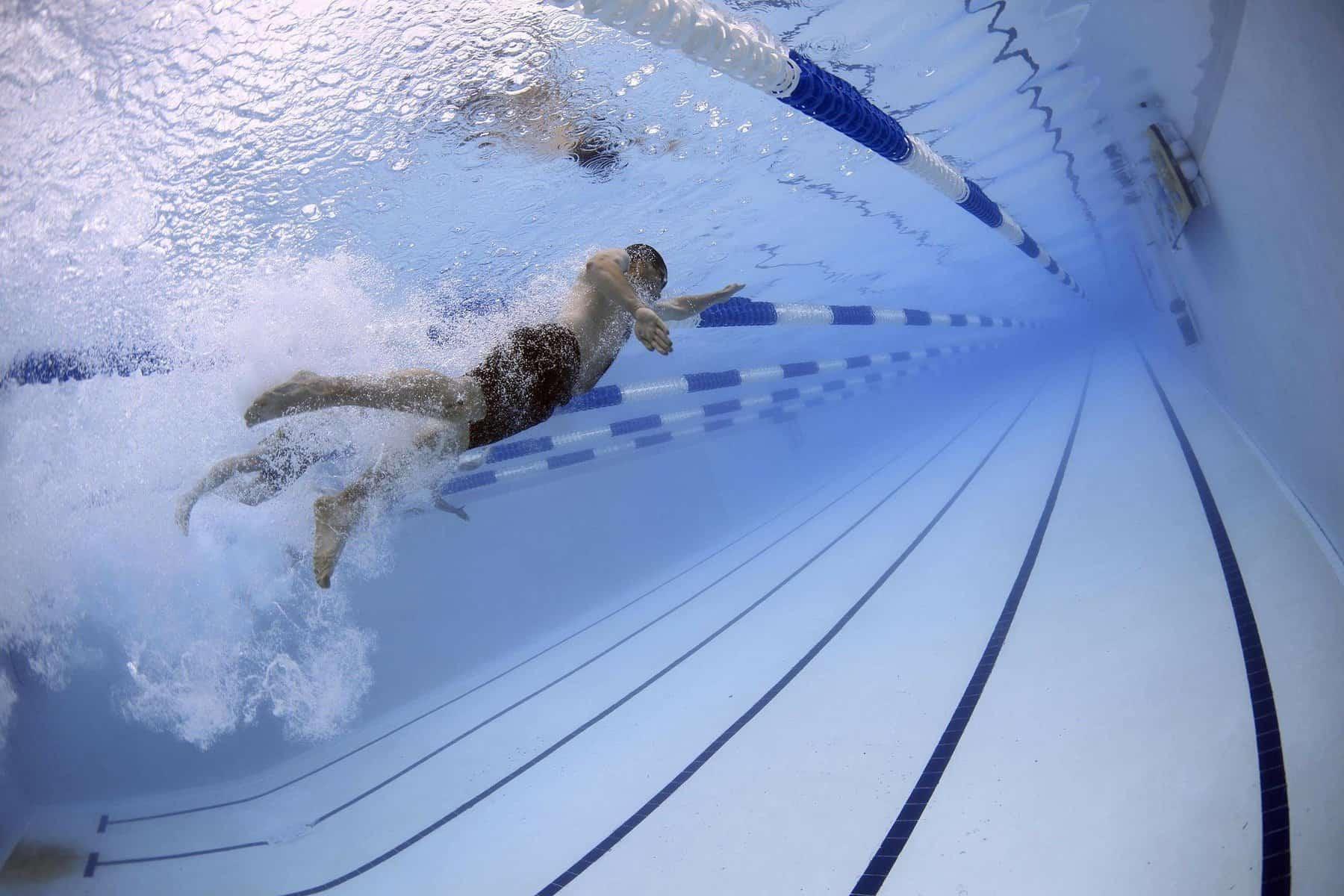 Bericht der Abteilung Schwimmen